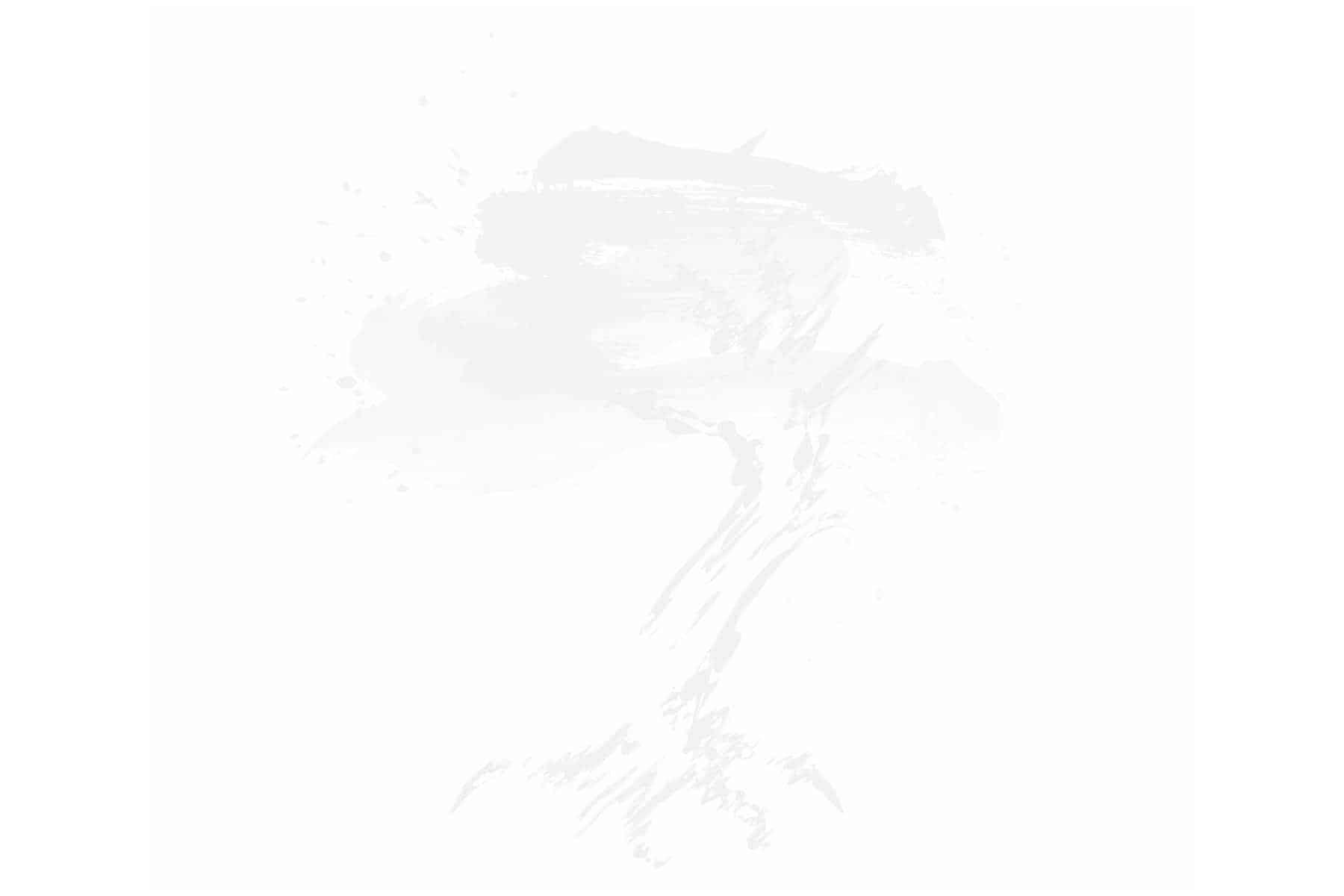LTC Logo Transparent